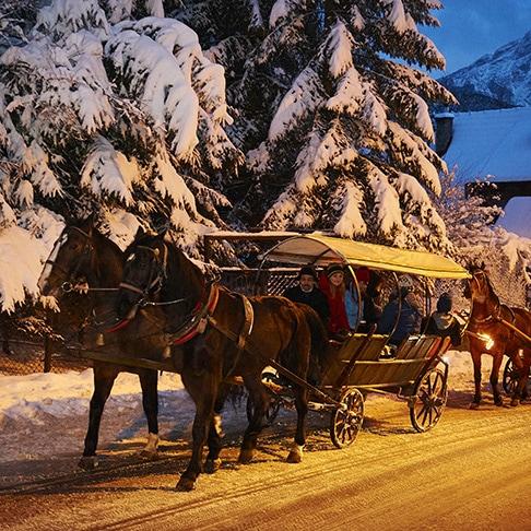 winter horse ridekrzeptówki - zakopane