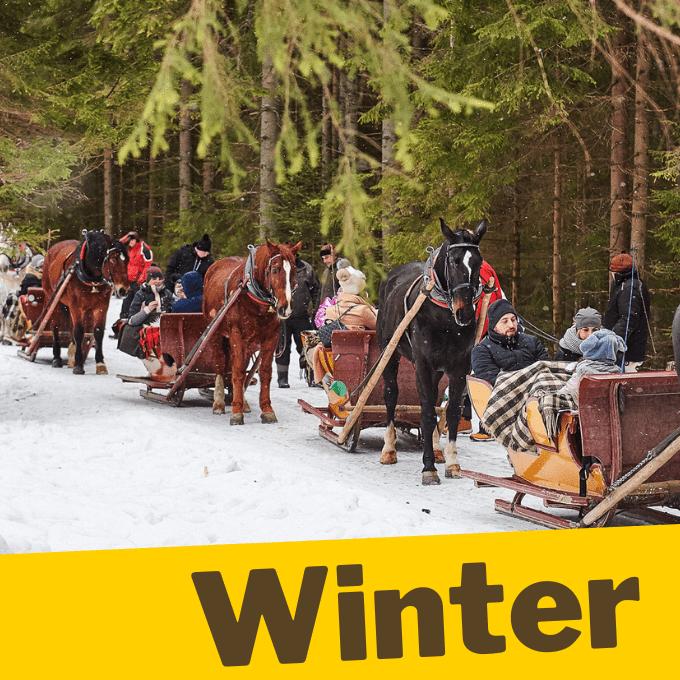 Magic winter sleigh ride in Chocholowska Valley